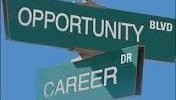 So You Think You Can Chance (Your Career)?